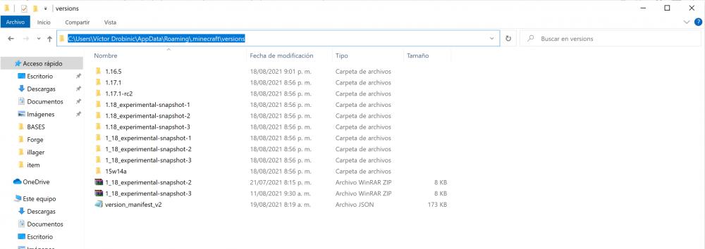 version folder expanded.png